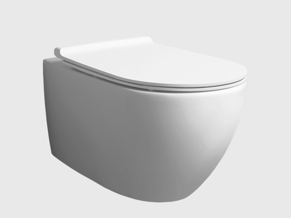 rimless wall hung toilet with seat