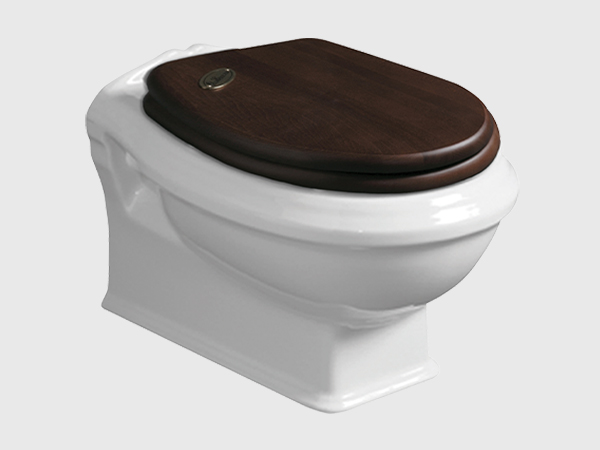 ARCADIA Rimless Wall Hung Toilet with Seat